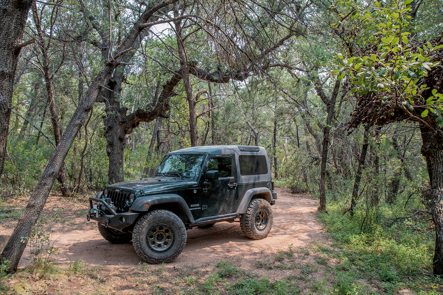 jeep in the trees gardner canyon arizona